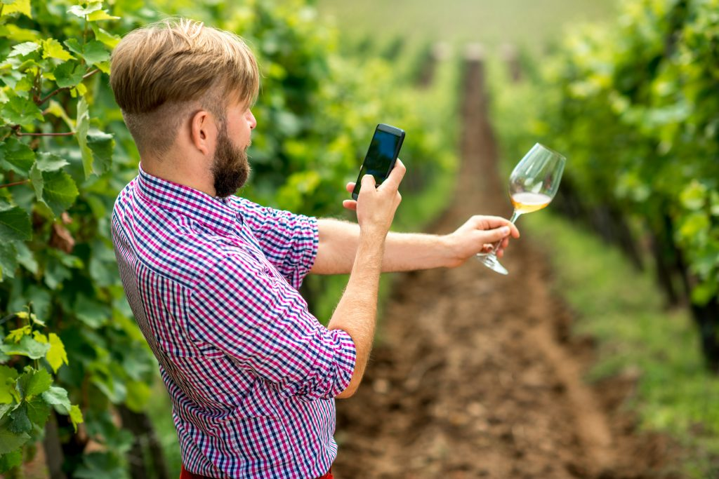 Wine maker or vinery owner photographing glass of wine on the vineyard. Promoting wine in social networks